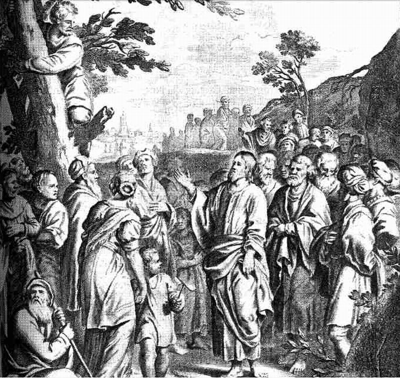 luther-s-bible-zacchaeus
